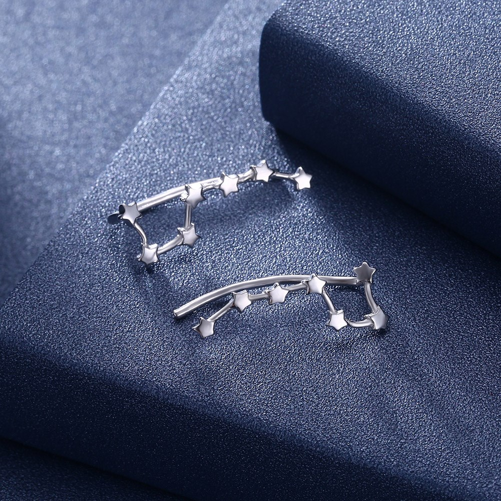 Platinum Plated  Drop Earrings NHKL13124-A